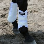 EcoGold Dressage Boots