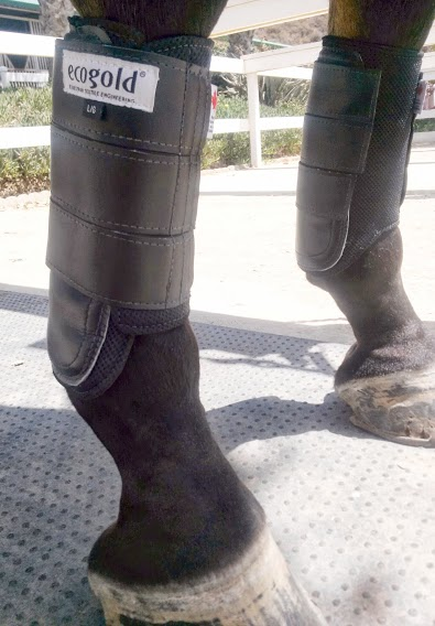 Ecogold Front Cross Country Boots