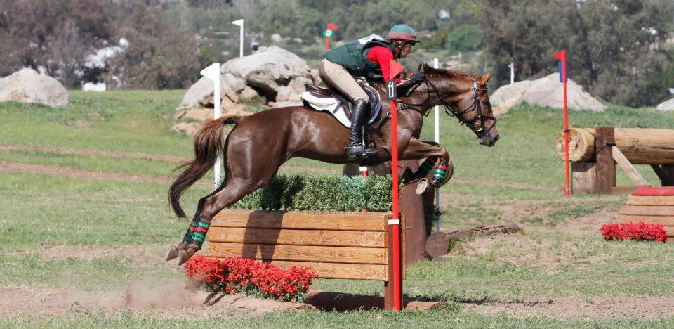 Copper Meadows Eventing