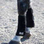 Ice Horse Tendon Wraps