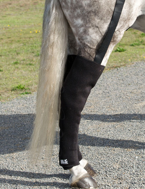 Ice Horse Full Hind Leg Equine Ice Boots With 16 Ice Packs