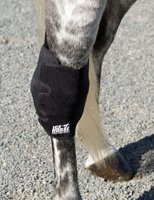 Ice Horse Hock Wraps In Pony Or Horse Size