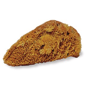 natural tack cleaning sponge