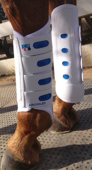 Premier Equine Eventing Boots Originals In Black Or White