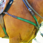 custom combination breastplate side view on horse