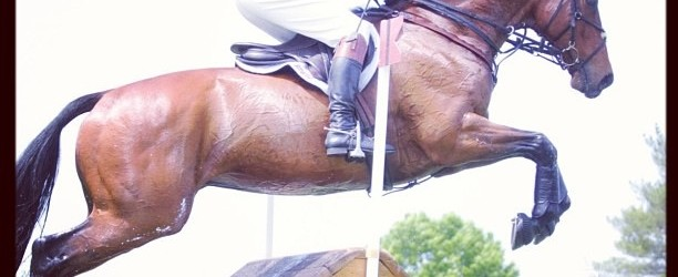 Eventing Saddles: Dressage, Jumping and Cross Country