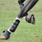 Eventing Bell Boots