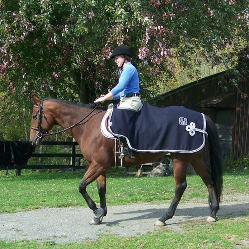 Custom Wool Quarter Sheet Riding Blanket Or Exercise Rug
