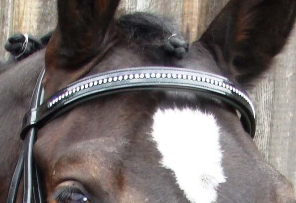 Swarovski Crystal Browbands For Horses Four Star