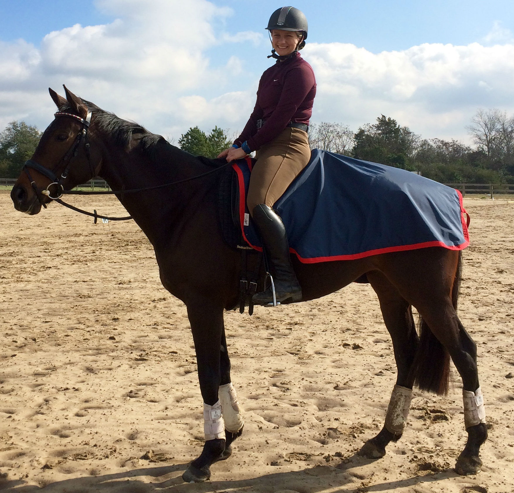 Horse Blankets, Sheets and Coolers