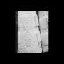 majyk dressage boot 2017 white
