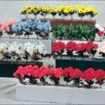 flower box jump