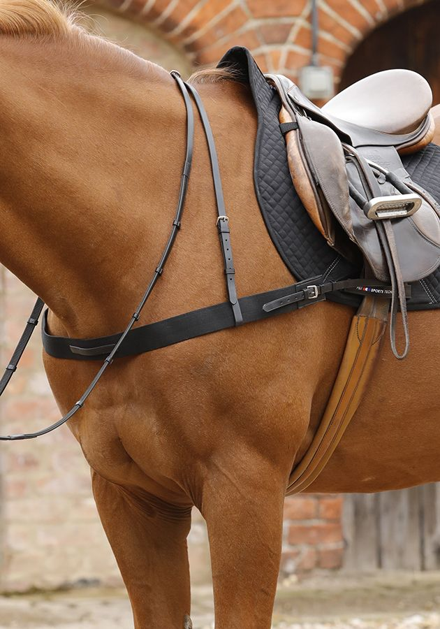 Polo Breastplate By Pei Adjustable With Quality Elastic Leather